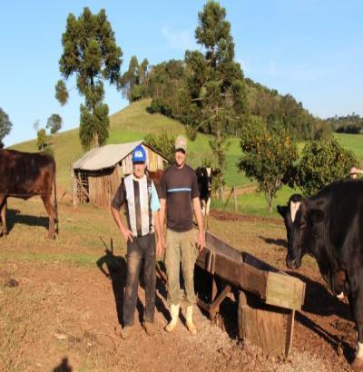Com 70 milhões de litros, Beltrão lidera produção de leite no Sudoeste